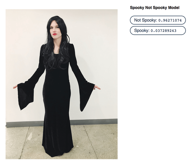 karen-herder-witch-costume