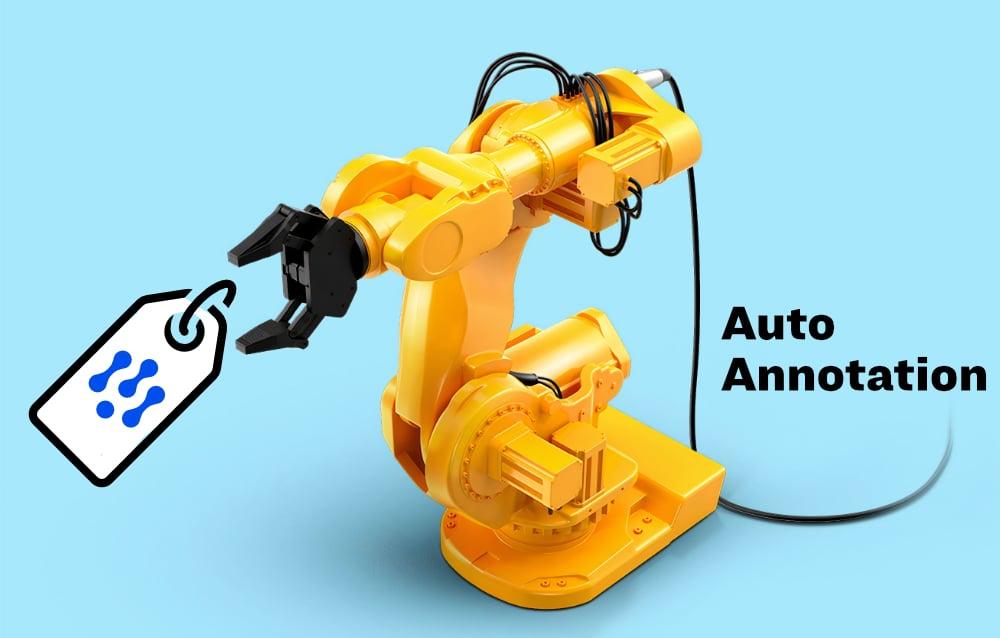 auto_annotation-1