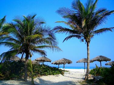 beach-nature-ocean-69787