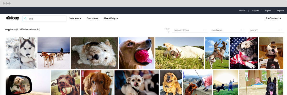 foap-dog-images-computer-screen-visual-search
