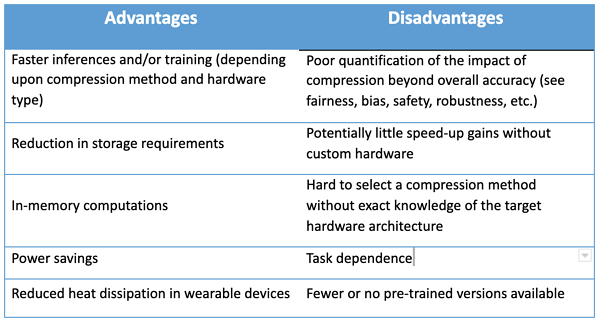 Advantages and Disadvantages of Pruning AI models